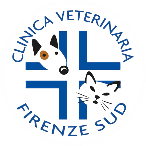 www.clinicaveterinariafirenzesud.it