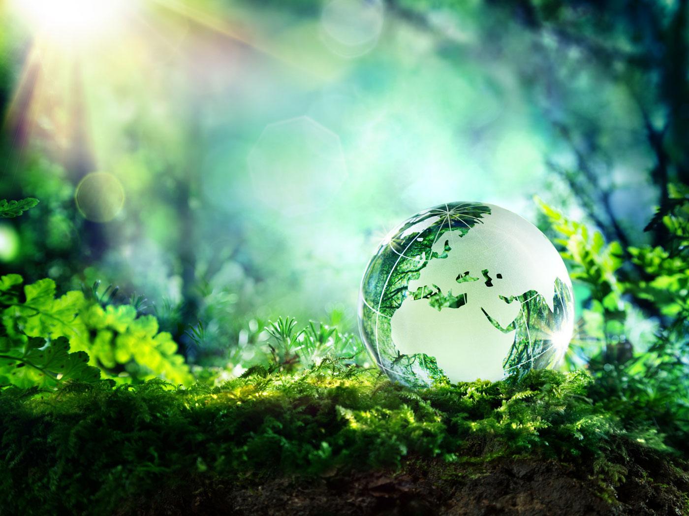 servizi ambientali chieti
