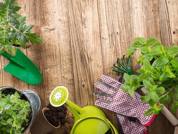 articoli da giardinaggio Olbia Tempio