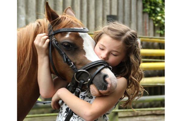 ippoterapia equitazione