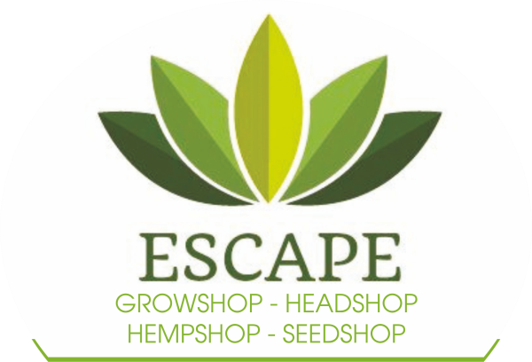 www.escapeaprilia.it