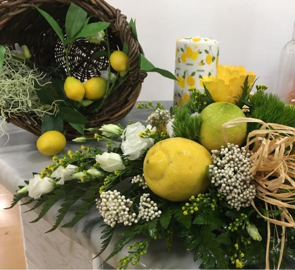 vendita fiori e piante carini