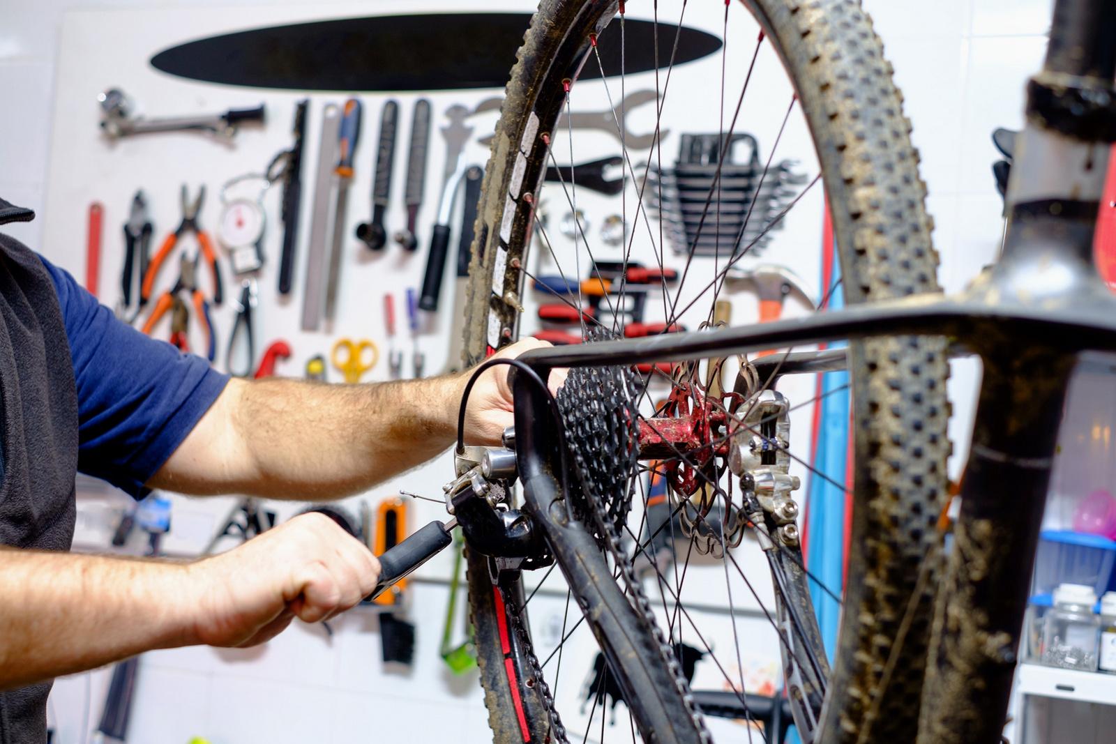 riparazione mountain bike Belluno