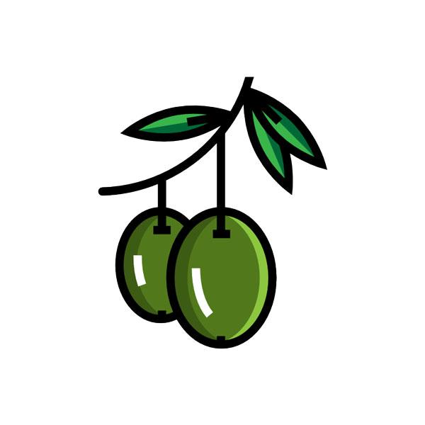 vendita olivi da talea lamezia terme