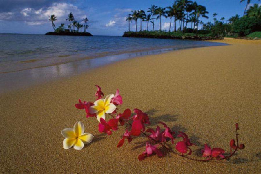 viaggio spiagge caraibi