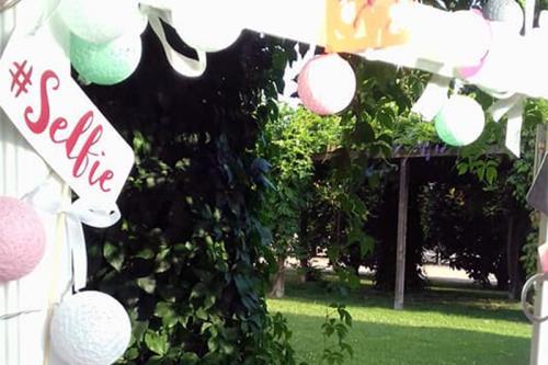 decorazioni palloncini gualdo tadino