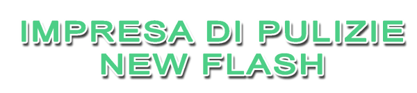 www.impresadipulizienewflash.it