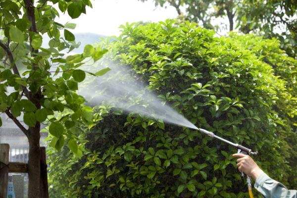 azienda servizi ambientali la spezia
