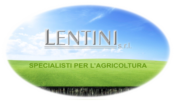 Lentini Srl Rizziconi (RC)