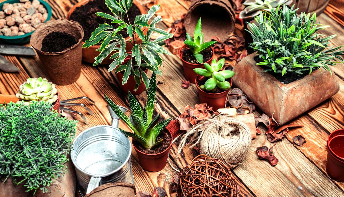 prodotti per il giardinaggio bg