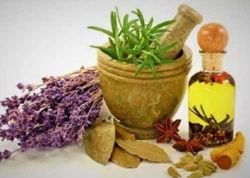 Rafforzare il proprio sistema immunitario con la fitoterapia