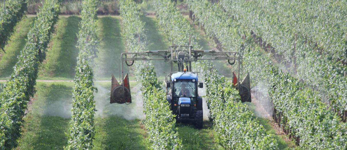 ricambi agricoli foggia