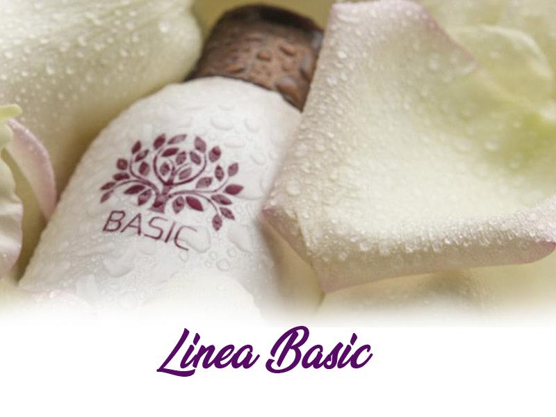 Linea capelli Basic Terni