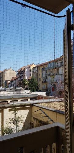 Montaggio reti per animali Antiparasit Torino