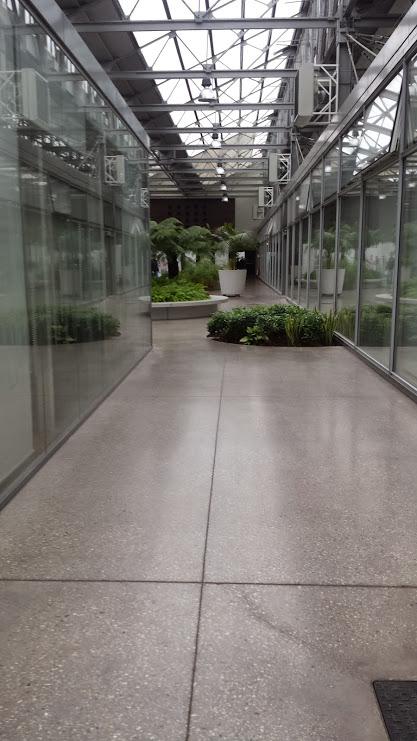 Lucidatura e ripristino pavimenti in cemento e calcestruzzo