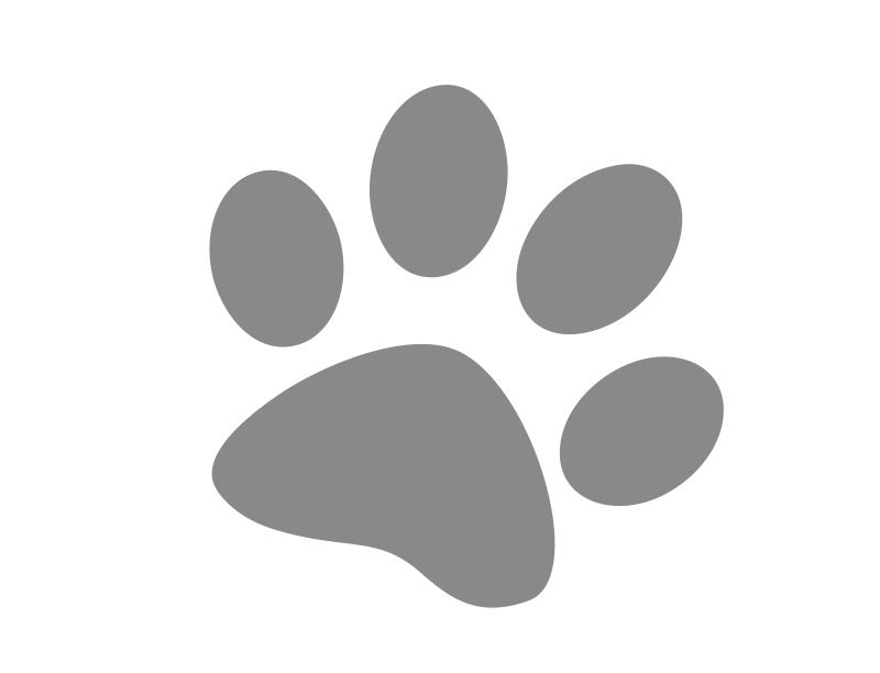 albergo con animali ammessi Bergamo