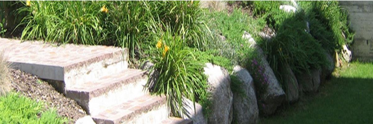 tappeti erbosi e giardinaggio