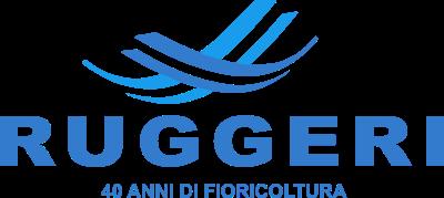 www.agenziaruggeri.com