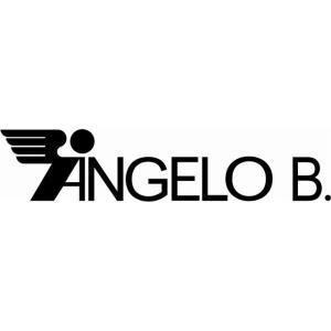 vendita abbigliamento antinfortunistica Angelo B. polistena reggio calabria
