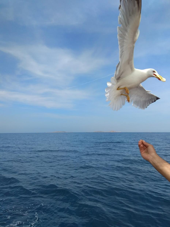 gite mare Sardegna
