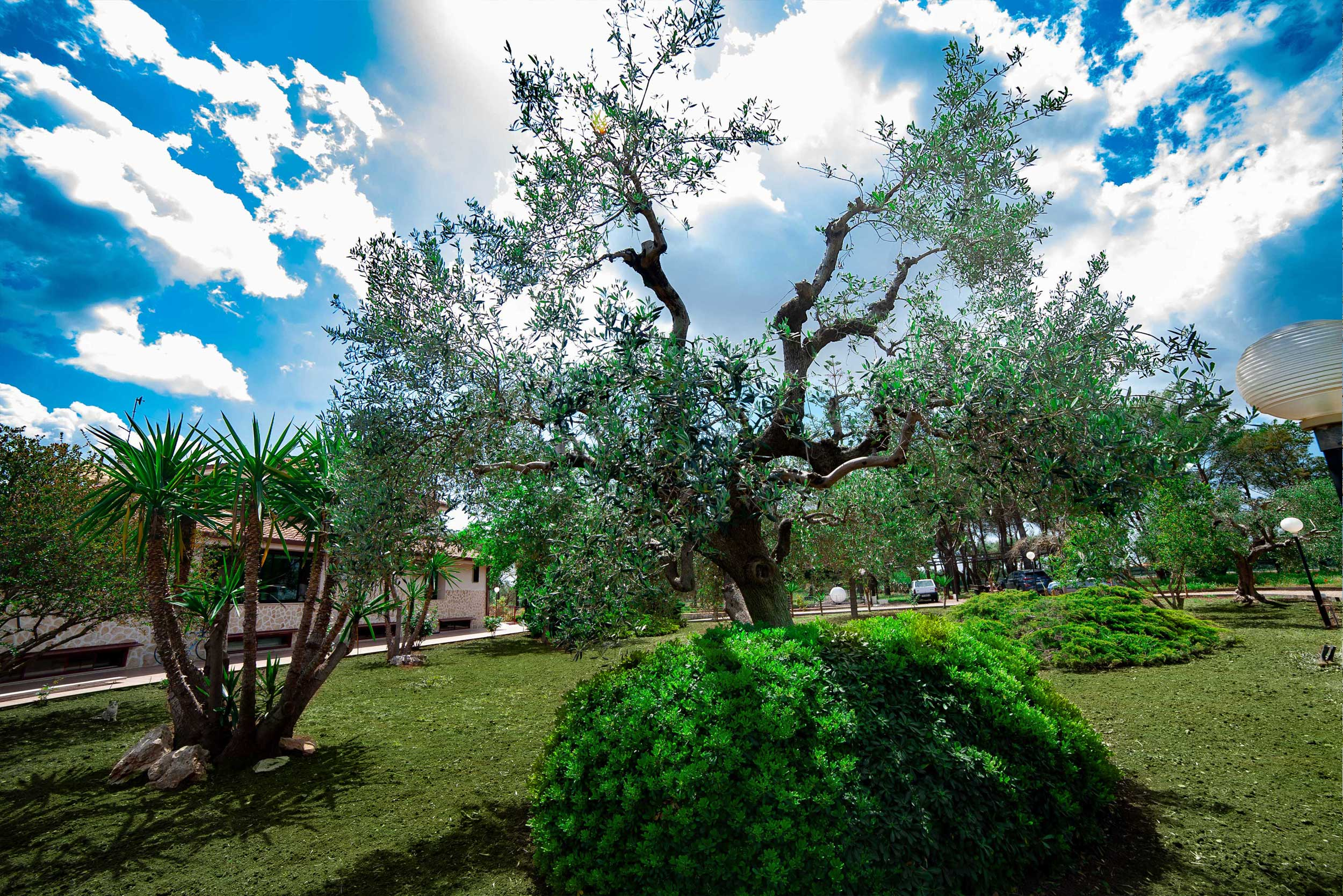 Relais immersed in the green