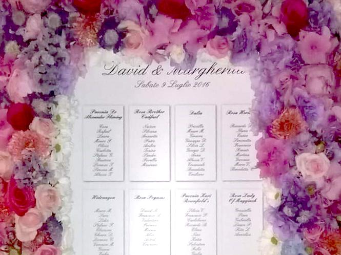 Piante e fiori Clorophilla