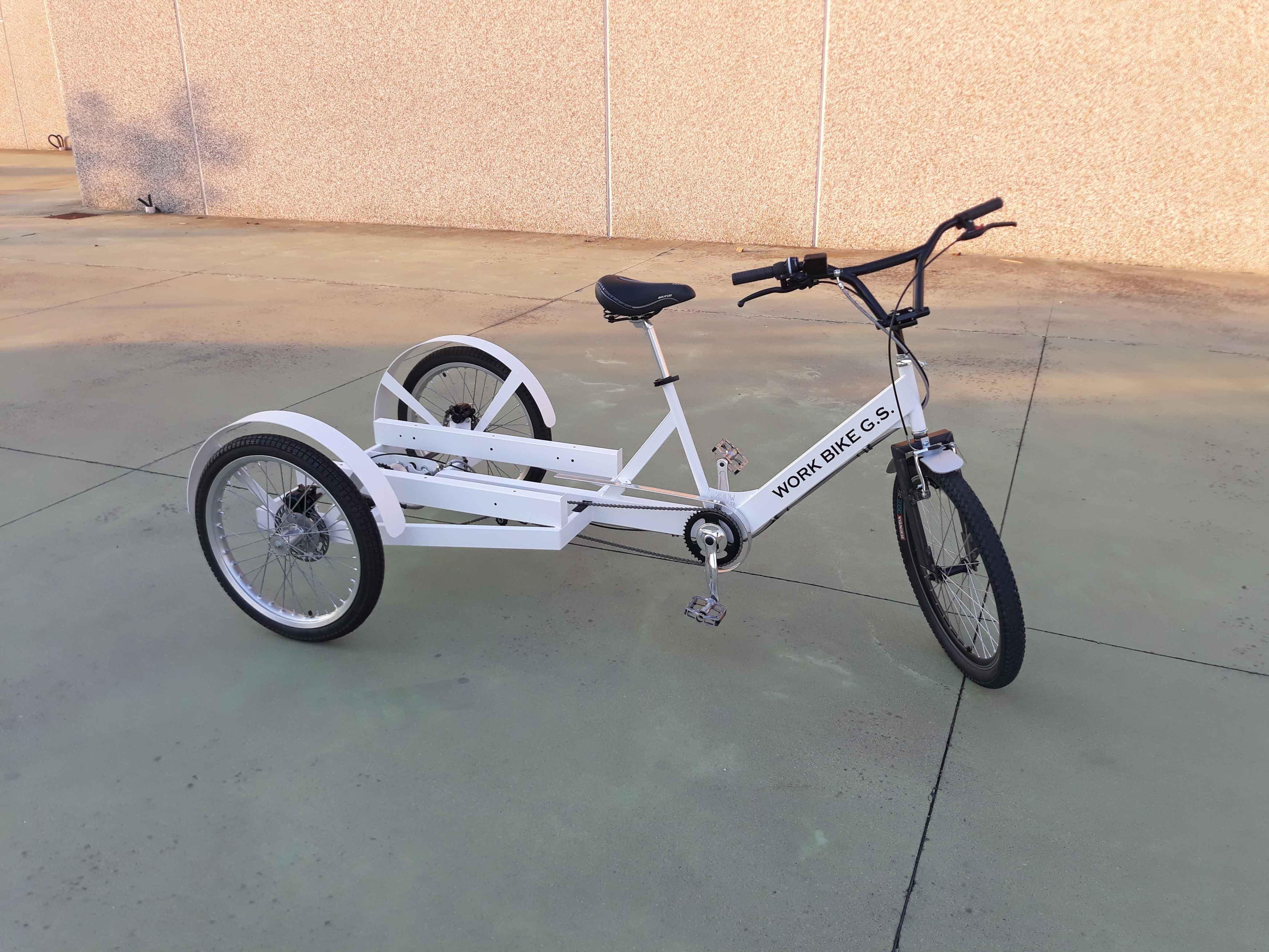 Cargo bike carico posteriore