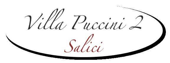 Villa Puccini 2 VA