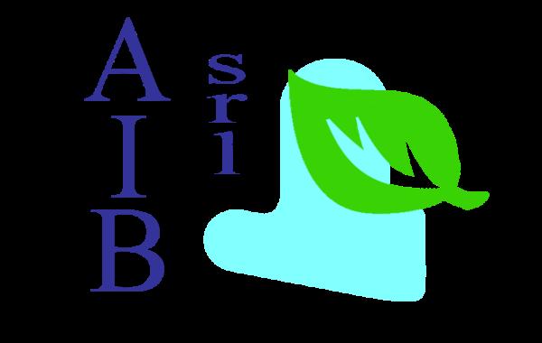 AIB srl