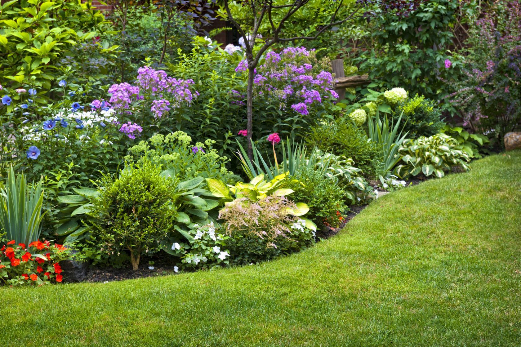 Agricoltura e giardinaggio Brico Service