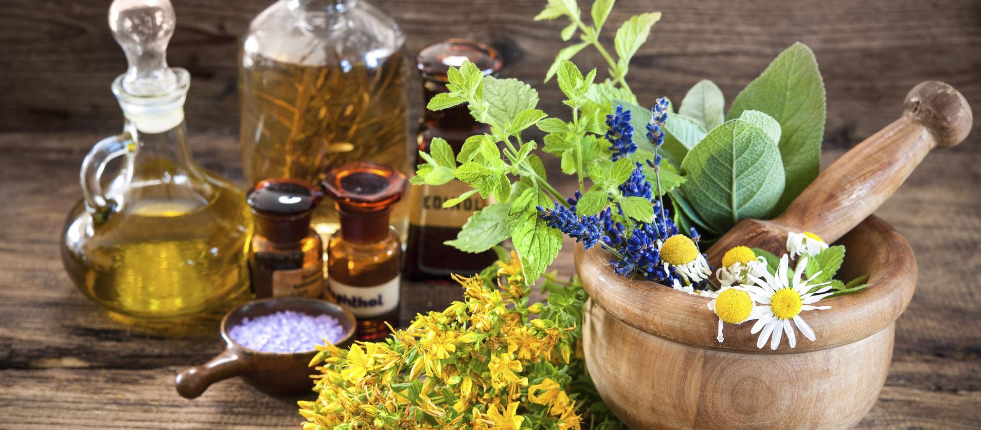 Piante officinali ed erbe aromatiche