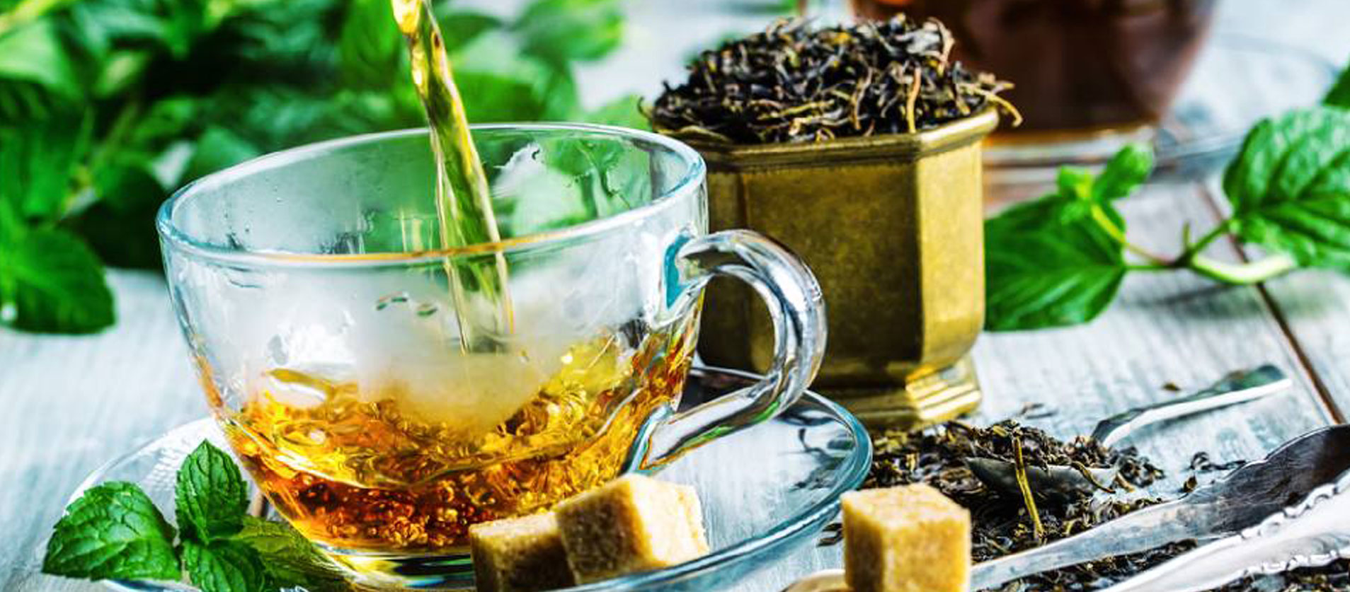 The infusi e tisane Erboristeria Sea Salus