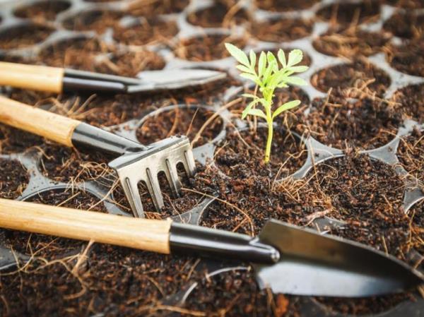 attrezzature giardinaggio