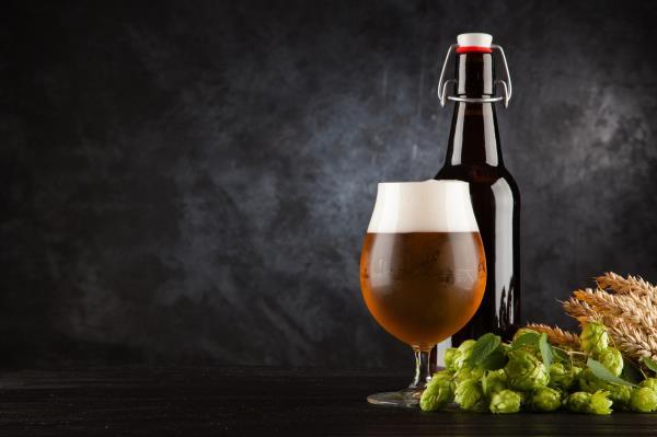 Birra e degustazione piatti scandinavi Birrificio Barba d