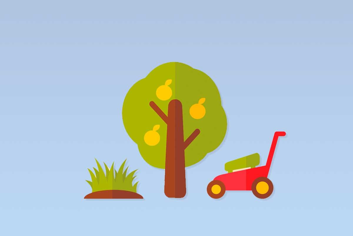Arredo e manutenzione piante