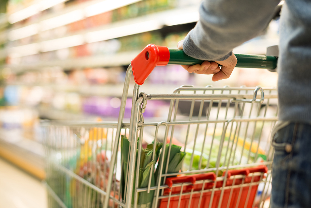 Supermercato economico Supermercato Coal