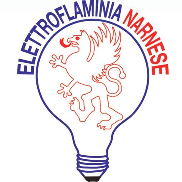 www.elettroflaminianarnese.it