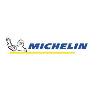 vendita penumatici michelin viadana