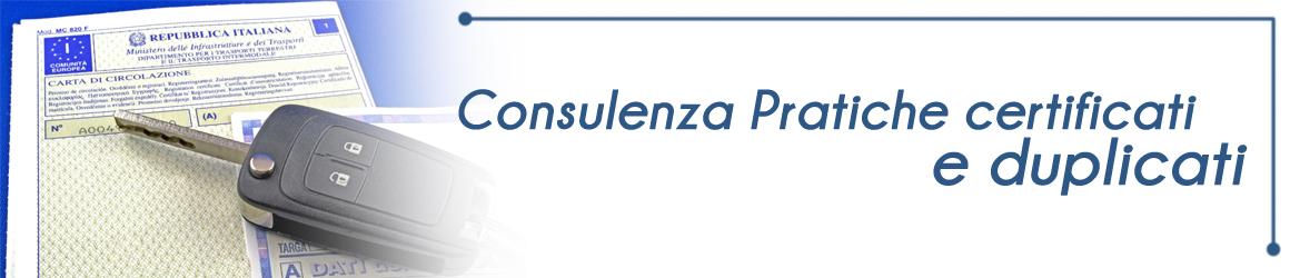 consulenza pratiche auto Orbassano Torino