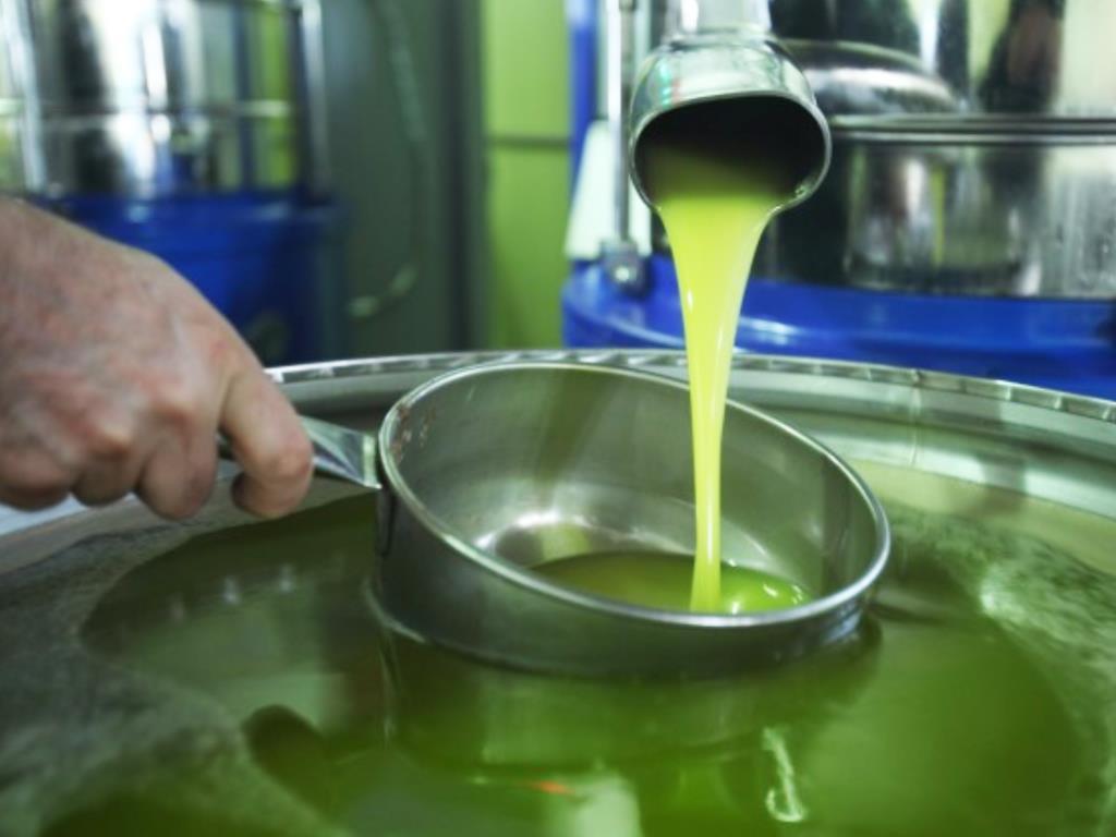 Commercializzazione olio biologico Incerti Marco Oli Alimentari