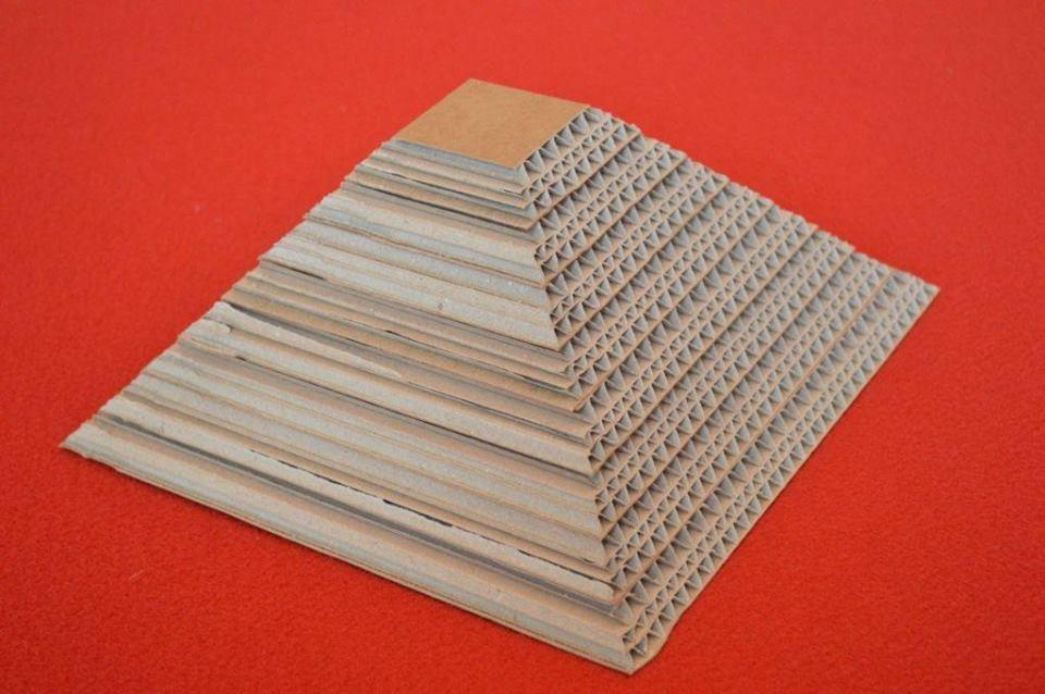 taglio in sezione di cartone
