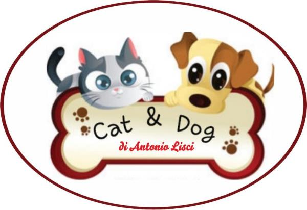 www.catdogsassari.com