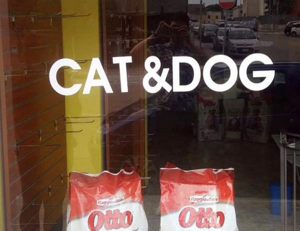 negozio cani e gatti sassari