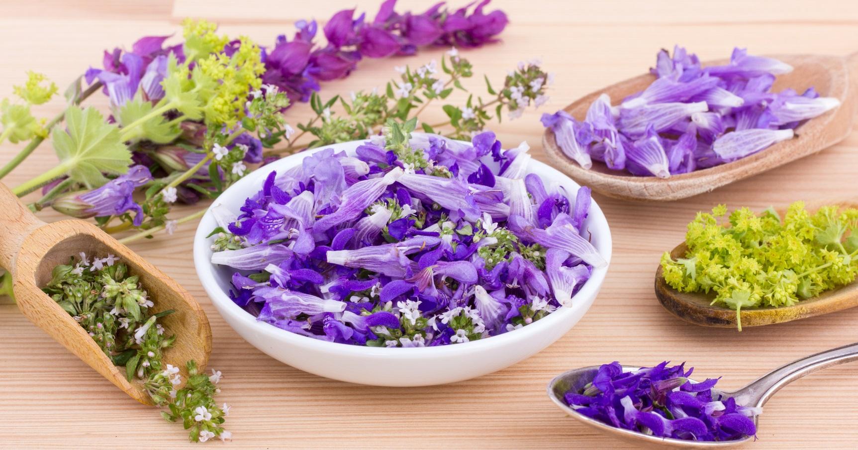 Spezie e Piante aromatiche