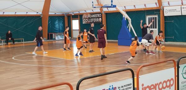 basket  Colleferro