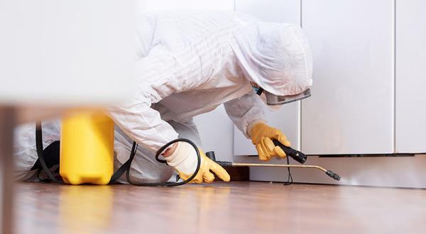 disinfezioni domestiche sassari