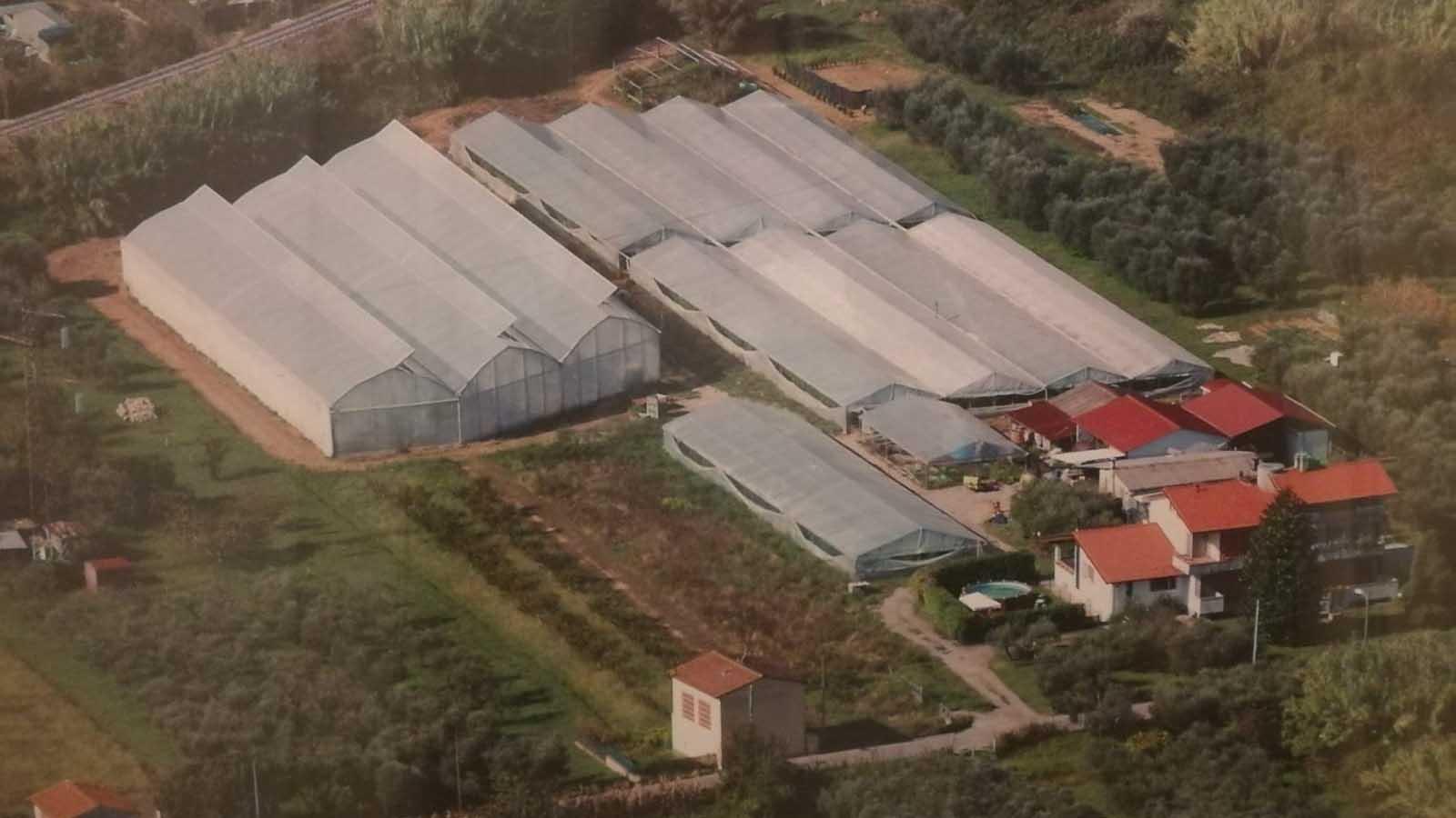 Azienda Agricola Simi Giorgio Mercatino agricolo