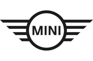 Mini Punto Car