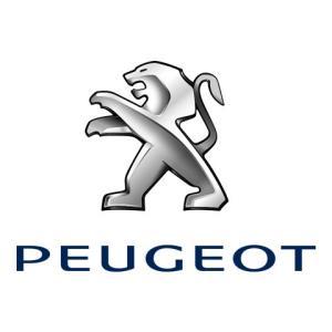 Peugeot Punto Car