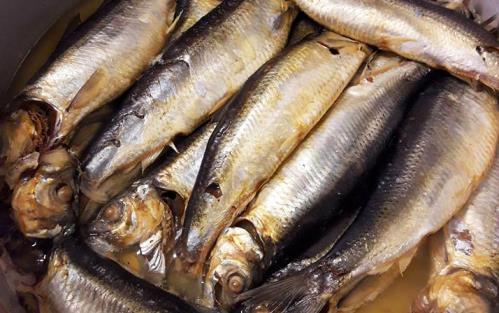 Vendita specialità ittiche Gastronomia TS